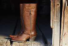 Women's Ariat Footwear